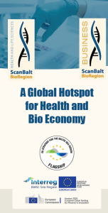 Global hotspot flyer